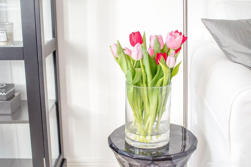 Tulips I Spring I City apartment