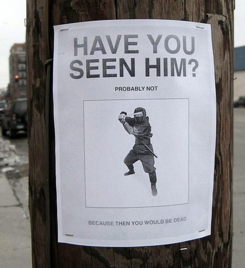 The 11 Funniest Signs On Telephone Poles – Funny Missing Person Poster