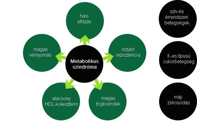 metabolikus méregtelenítés