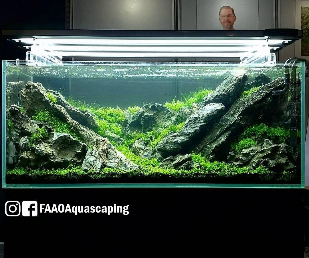Beautiful Layout By Takayuki Fukada At CIPS Exhibition In Guangzhou China. #FAAO # Aquascaping #