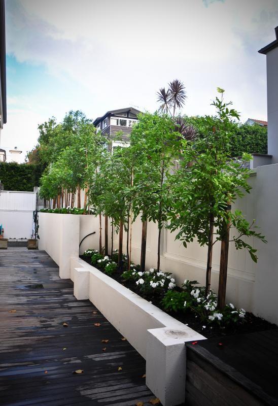 Design Landscape Design And Garden Maintenance In Auckland Landscape Design Garden Planning Garden Maintenance