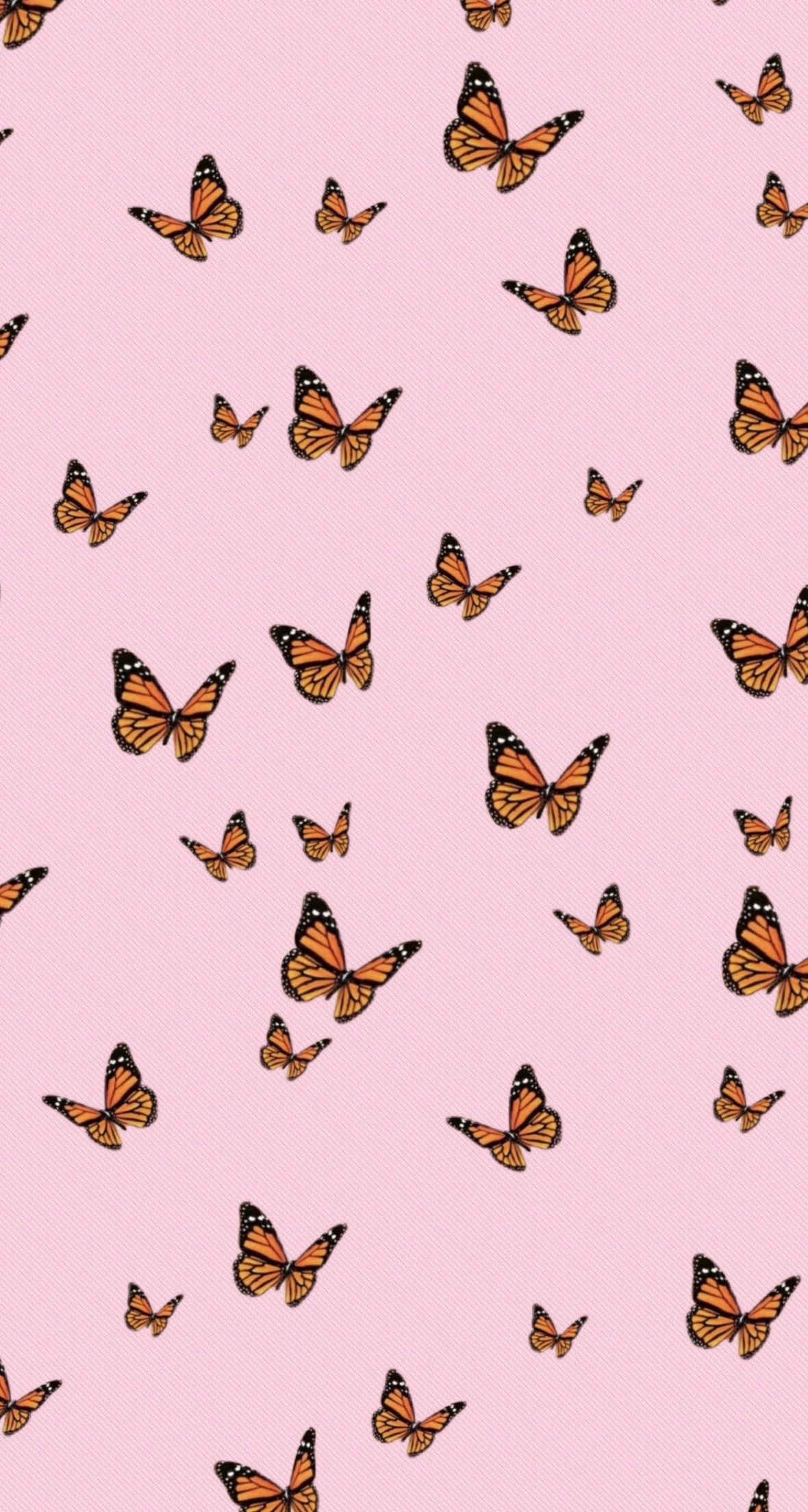 Aesthetic Butterfly Wallpaper Pink