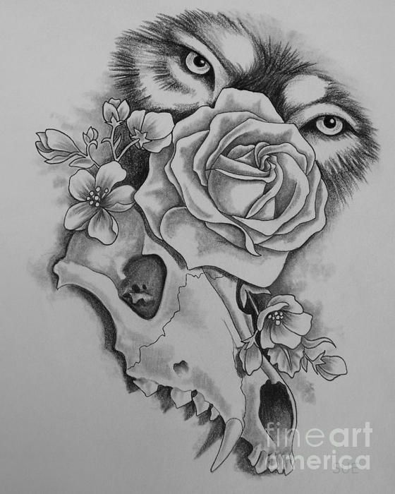 Skull With Flower Eyes Drawings Gardening Flower And