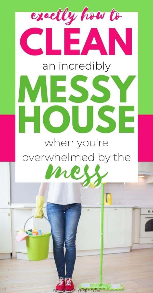 how to clean a disgusting house