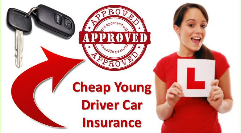 compare car insurance quotes young drivers | Cheap car ...