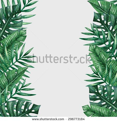 palm tree leaves background template tropical greeting card stock vector