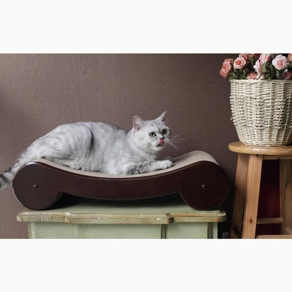 Cat Scratcher Bed      >>>>> On SALE    http://amzn.to/2bkdH6u