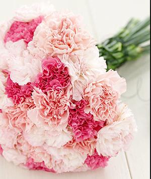 Carnation Bouquet Buket Bunga Buket Bunga