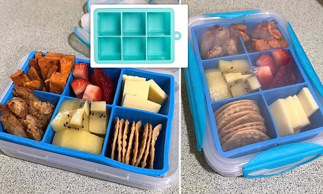 Bento Box Hack With A Kmart Ice Cube Tray Clip Container