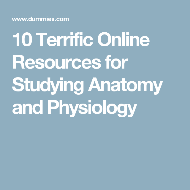 10 Terrific Online Resources for Studying Anatomy and Physiology ...