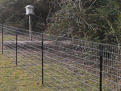 Image Result For T Post Fencing Diy Dog Fence Livestock