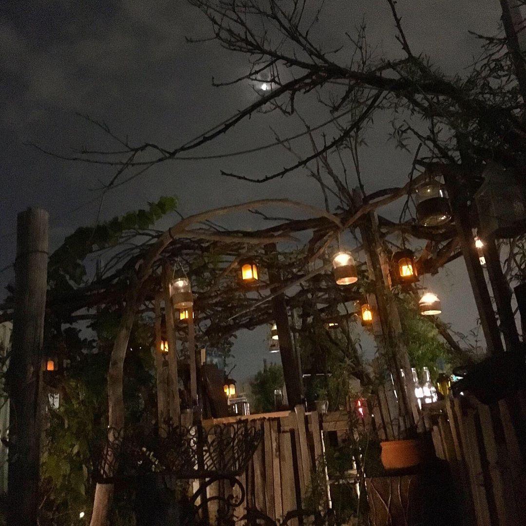 The Last Of The Midnight Gardeners