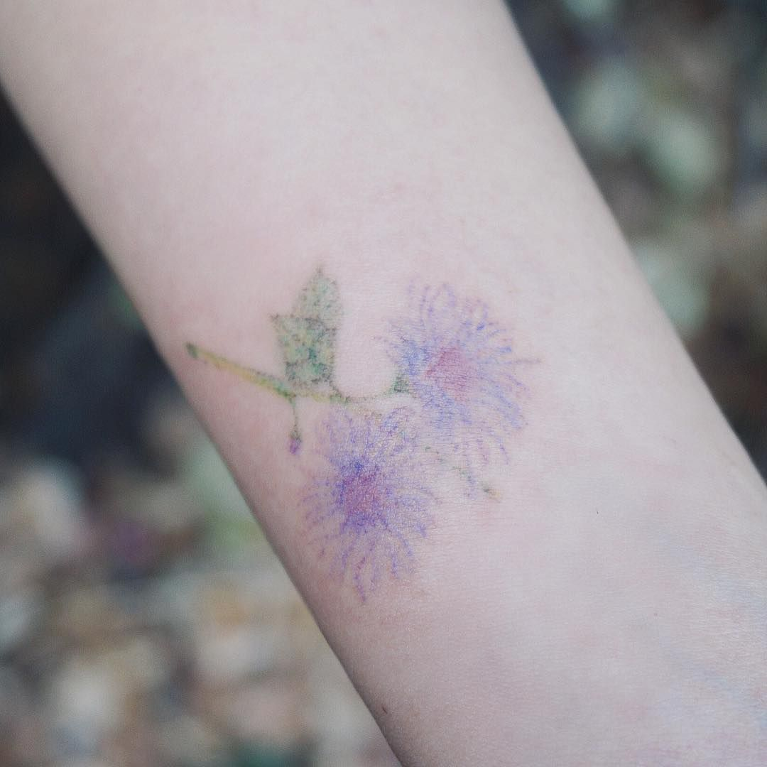 ageratum {handpoked} . . . . #tattoo #tattoos #tattooing #tattooart #art #handpoked #handpoke #handpoketattoo #handpokedtattoo #drawing #handpokedtattoos #타투 #타투이스트박하 #핸드포크  #stickandpoke #tattoowork #tattooersubmission #equilattera #watercolortattoo #핸드포크타투 #handpokeartists #handpokers #vintagetattoo #vintagetattoos #stickandpoketattoo #sticknpoke #nomachine #handpushed