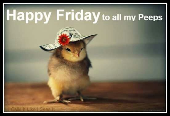 Hey My Peeps Happy Friday Animals Beautiful Cute Creatures
