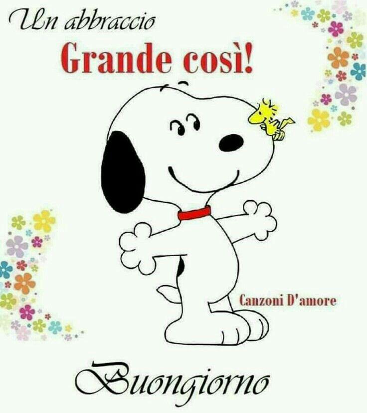 Pin di monica vernizzi su buongiorno good morning for Immagini divertenti buon giorno