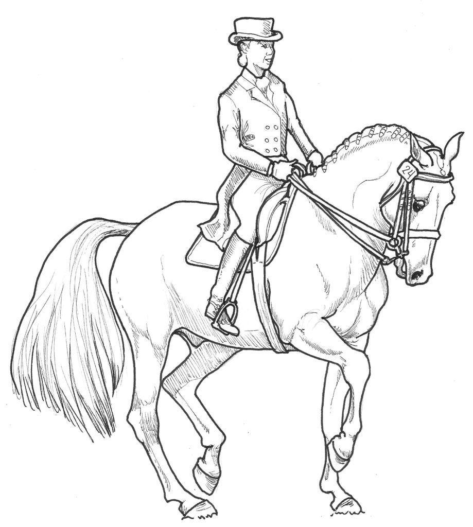 dressur ausmalbilder pferde mit reiterin - christopher