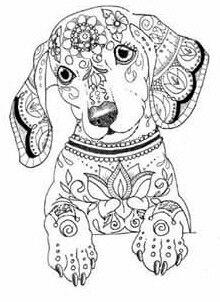 Dibujo De Perro Salchicha Hermoso Dibujo Dibujos De Perros