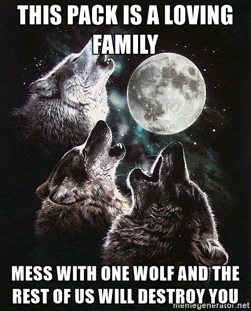 Pin on Wolf quotes