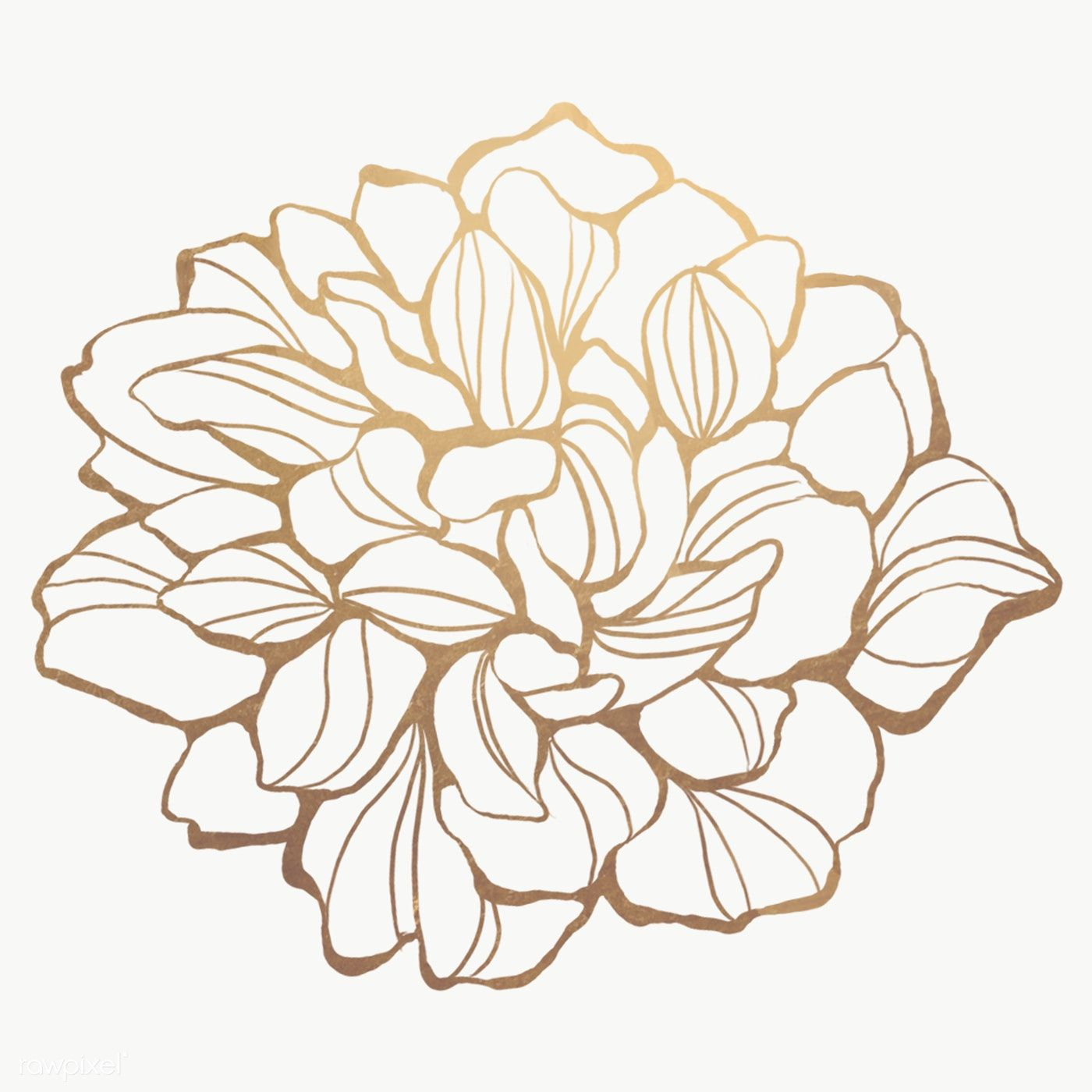 Download Premium Png Of Gold Flower Outline Transparent Png 2019662 Flower Outline Outline Art Line Art Flowers
