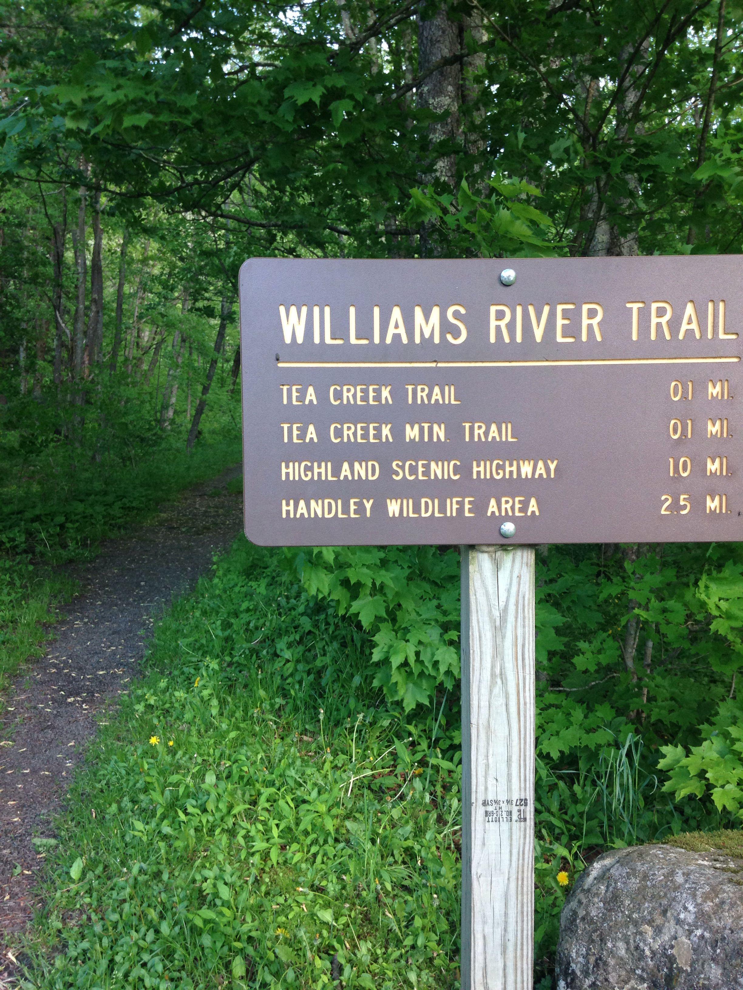 Williams River Tea Creek WV | Our Camping Memories | West