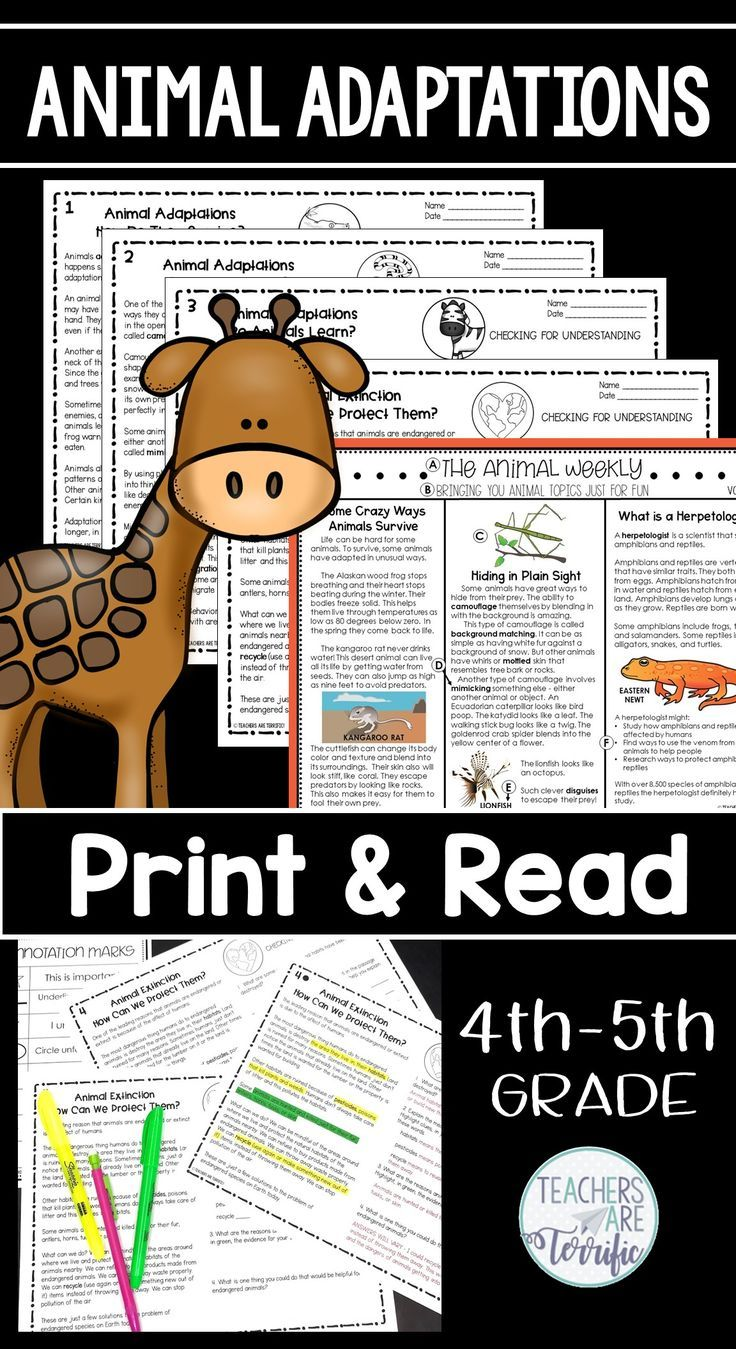 Animal Adaptations Reading Passages Print & Read