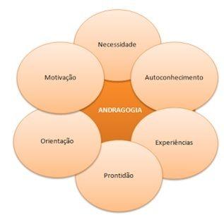 Os seis princípios de Andragogia.   Psicopedagogia, Orientação