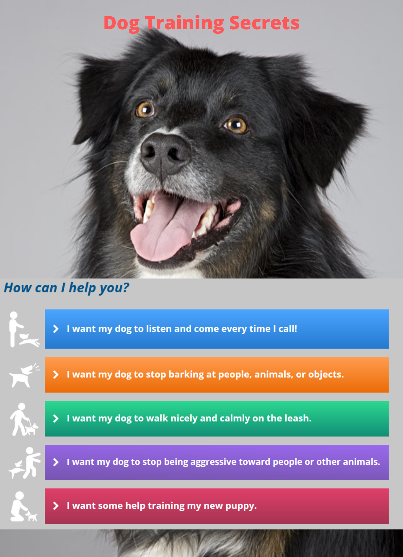 Dog Training Secrets They Don T Want You To Know About Bear Dog Breed Dog Training Best Dog Names