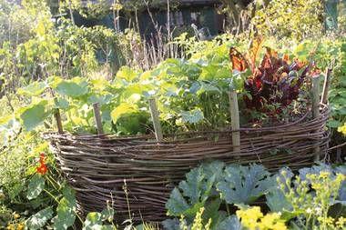 Das Permakultur Hochbeet Stocker Verlag Graz Permakultur Garten Garten Ideen