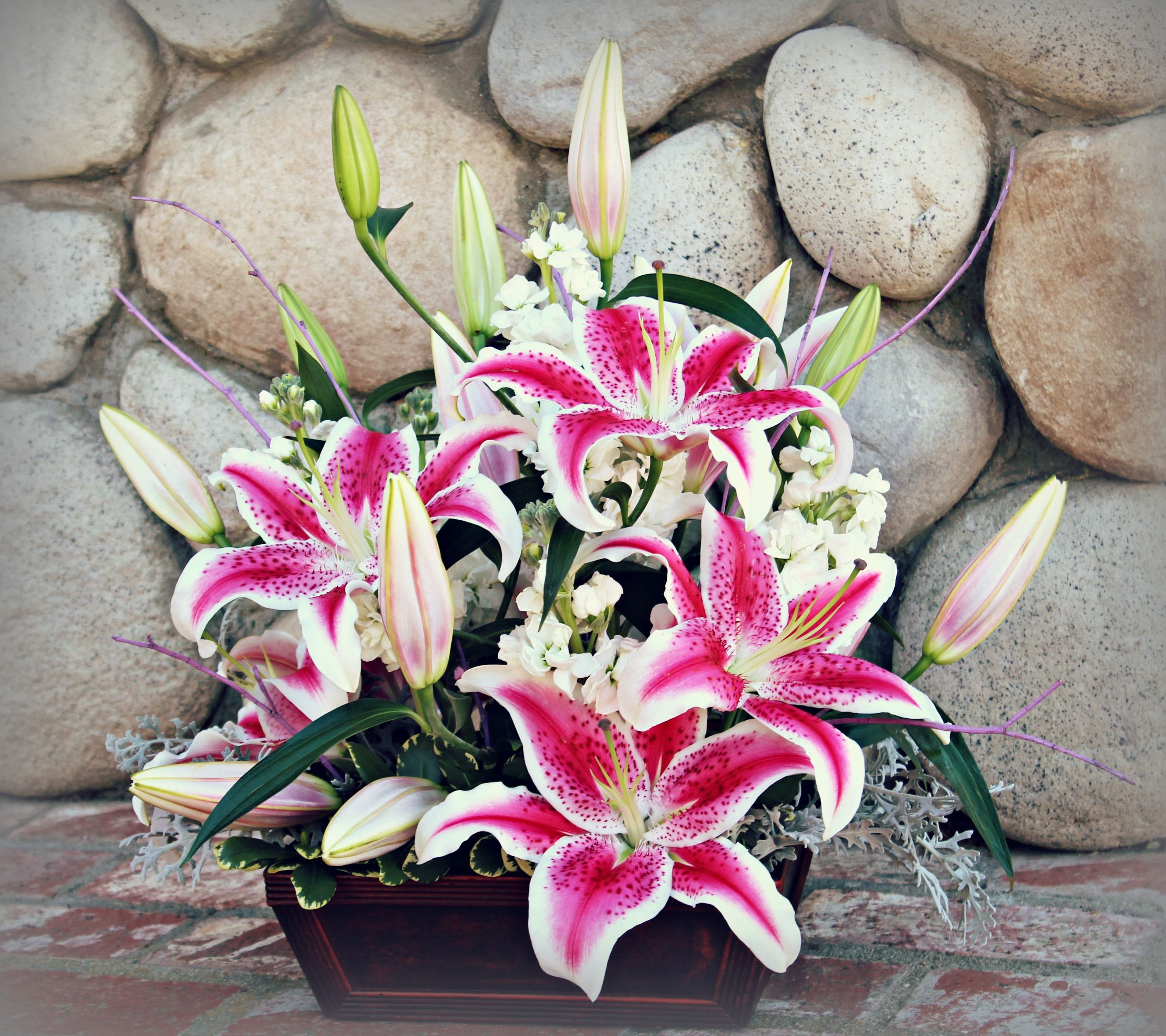 Starfighter Lily Arrangement Sango Wedding Florist