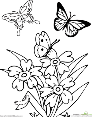Butterfly Worksheet Education Com Spring Coloring Pages Butterfly Coloring Page Flower Coloring Pages