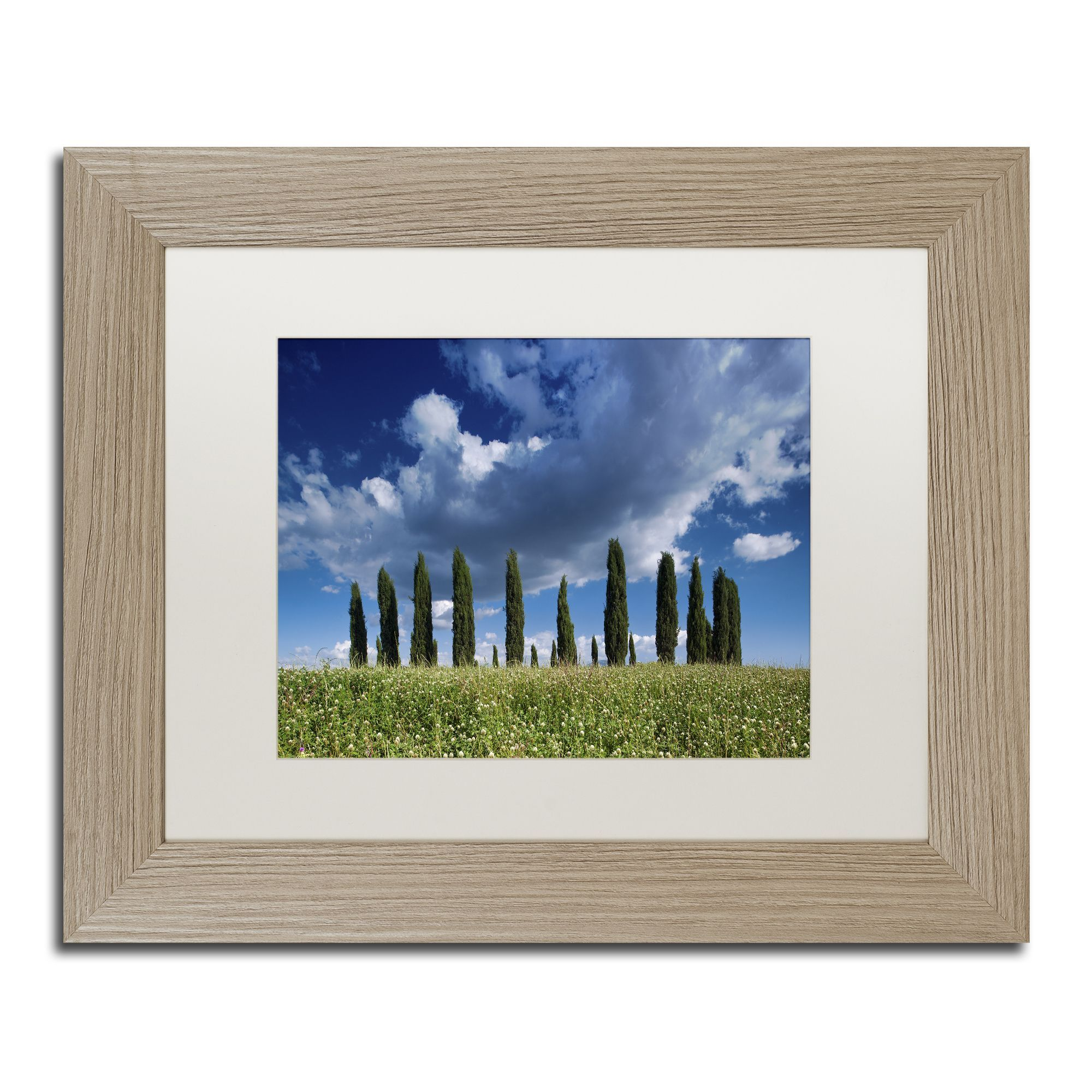 Michael Blanchette Photography \'Cypress Hill Clouds\' Matted Framed ...