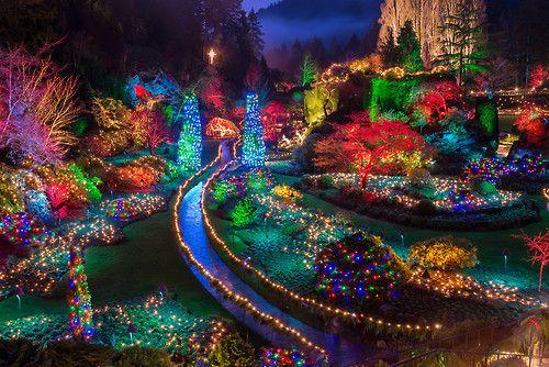 Butchart Gardens Christmas Lights Victoria B C Photographer James Wheeler Buchart Gardens Garden Shower Butchart Gardens