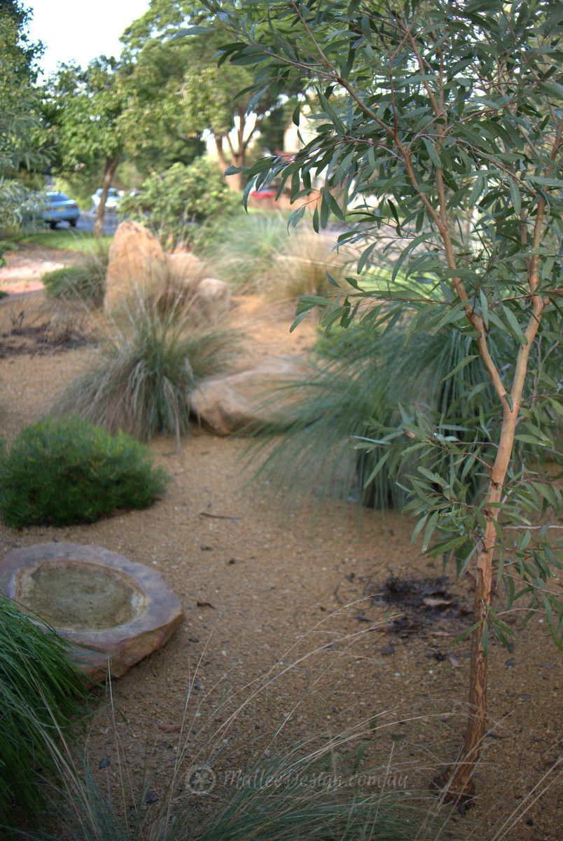 Mallee Design Native Australian Garden