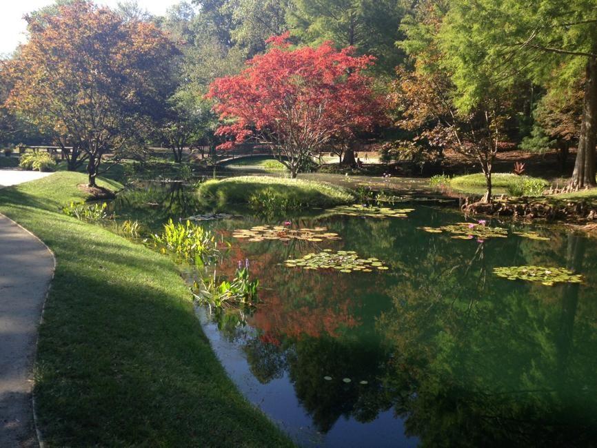 Where delightful gardens bloom in metro Atlanta and beyond