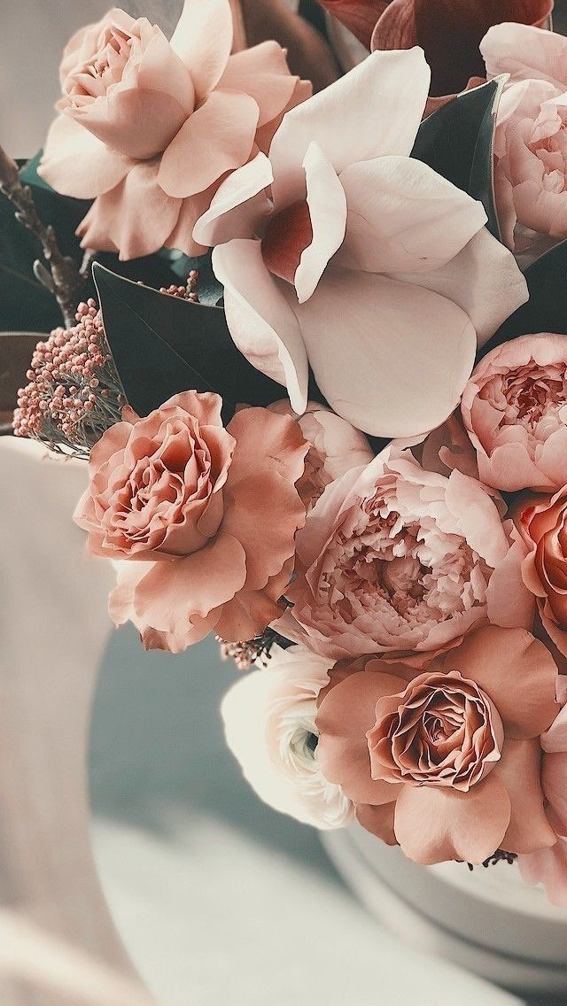 Flowers 🌺 on Twitter