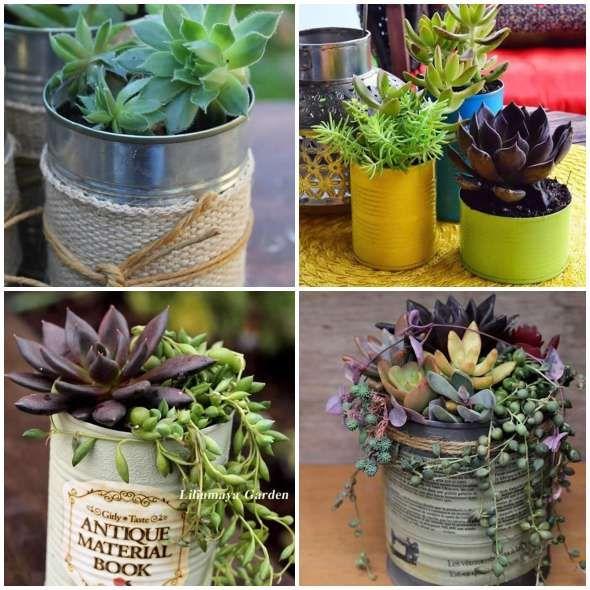 Ideias Para Fazer Vasos Sustentaveis Plantas Suculentas