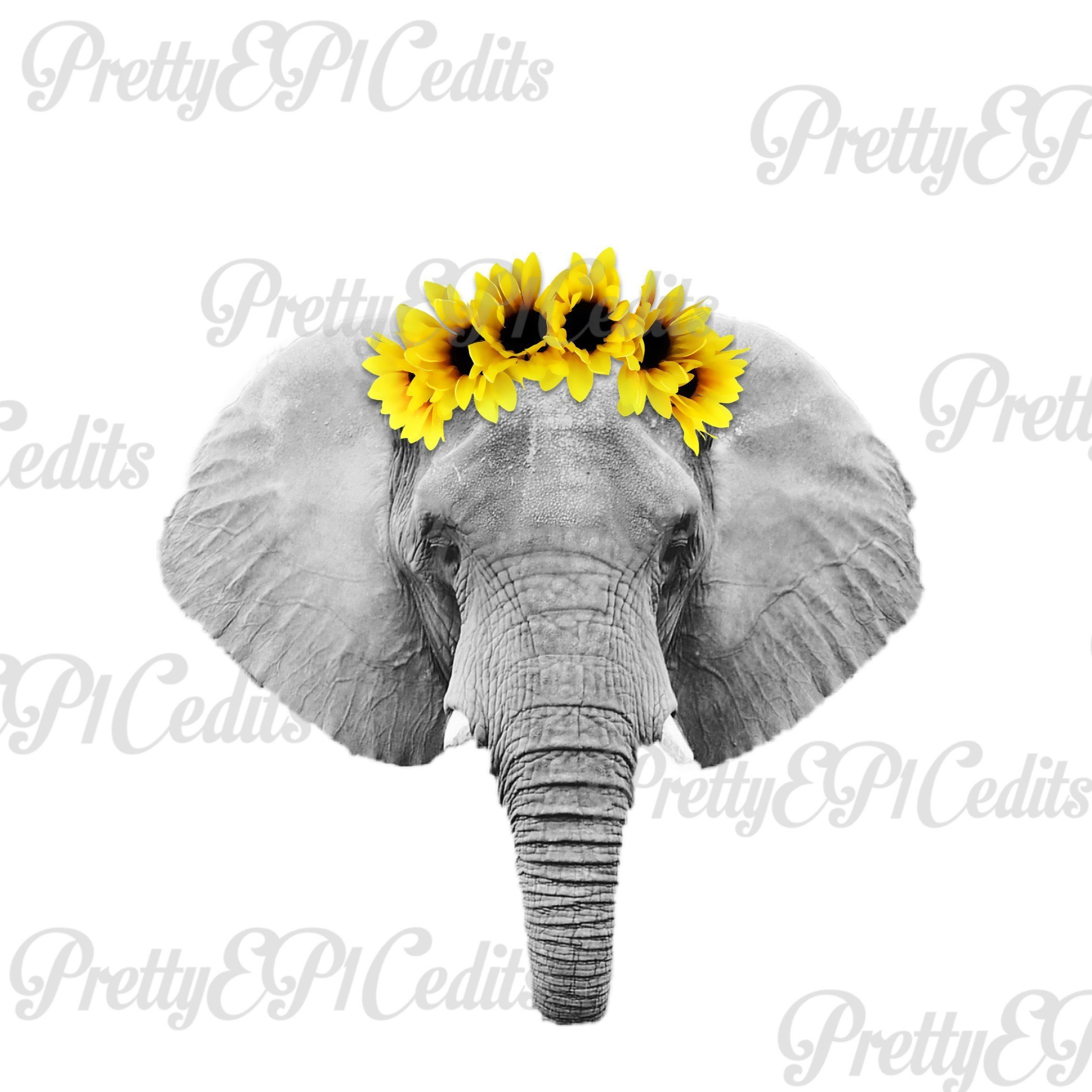 Elephant Sunflower Clip Art Png Digital Download Etsy Elephant Elephant Tattoo Small Elephant Art All png & cliparts images on nicepng are best quality. elephant sunflower clip art png digital