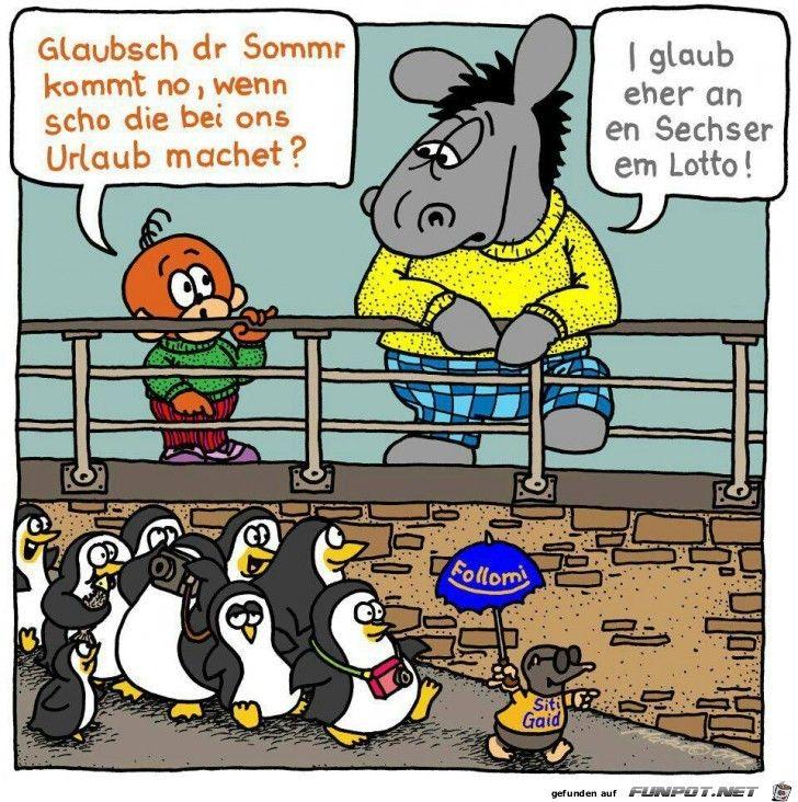 Aeffle Und Pferdle Funny Humor Fun
