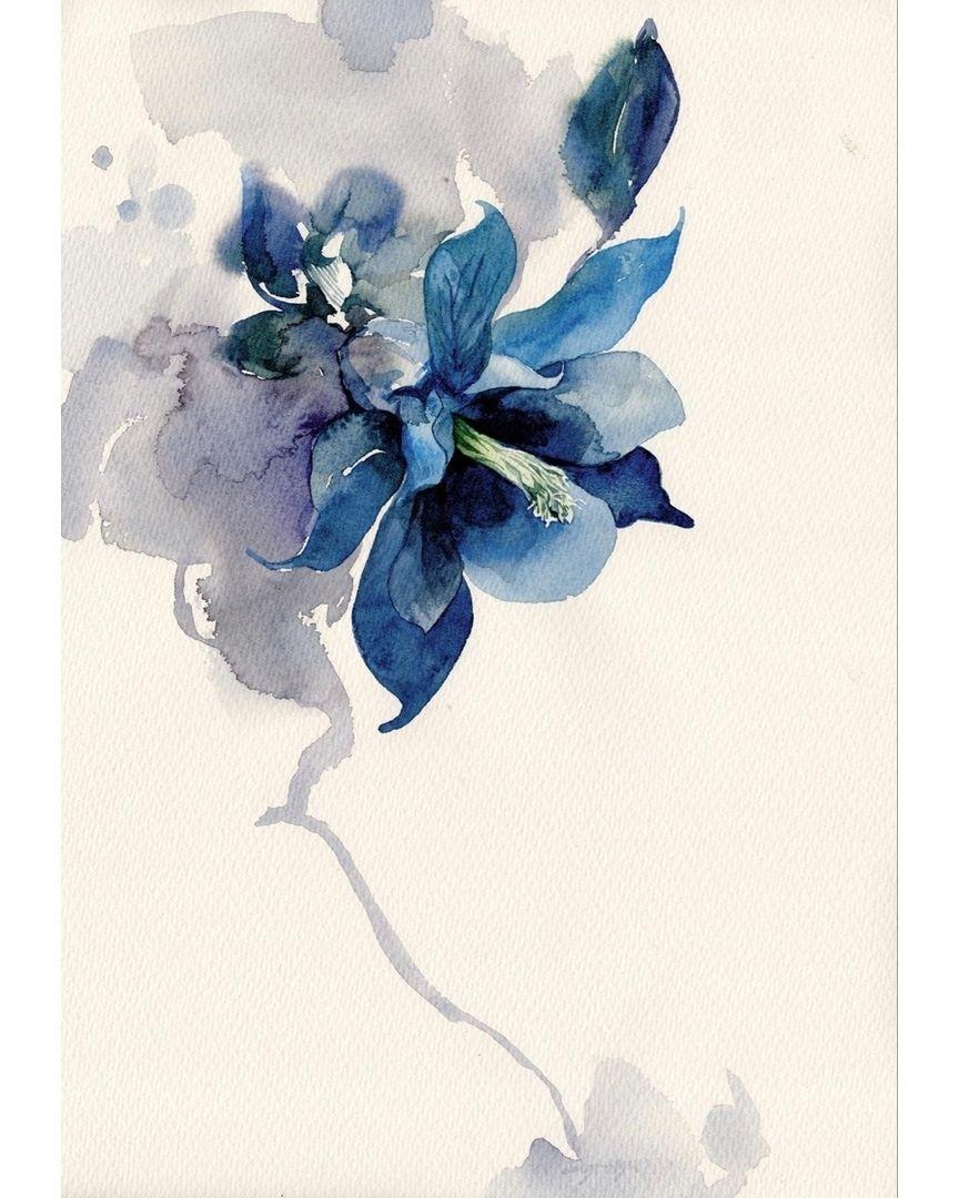 Watercolorist Tyhsu Co Uk