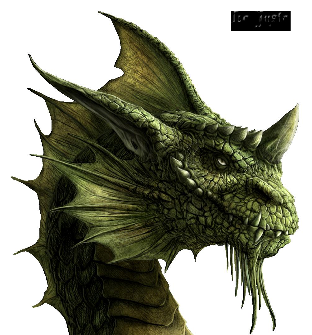 Render Dragons - Renders Dragon Vert Profil Kerem Beyit