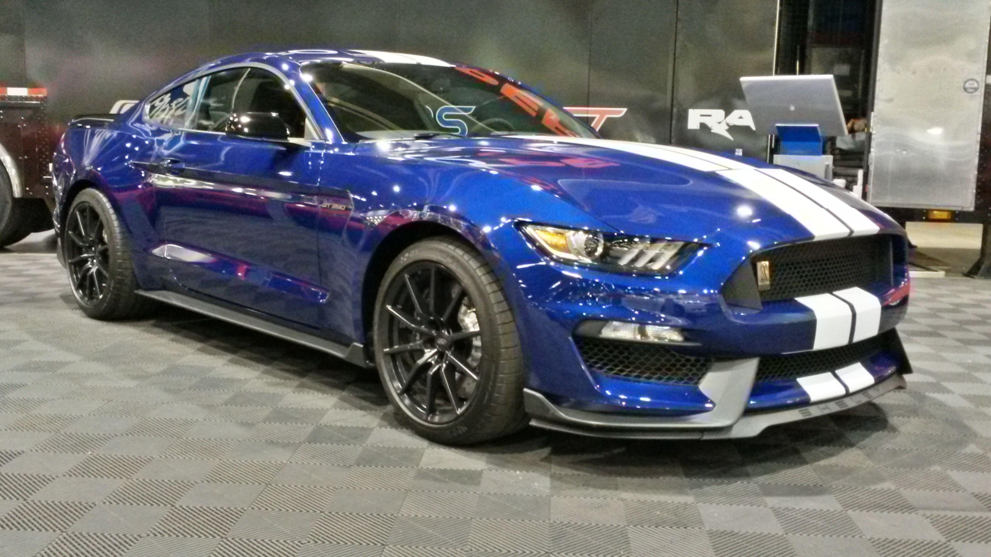 2016 Mustang GT350 Deep Impact BlueWhite wBlack Racing Stripe