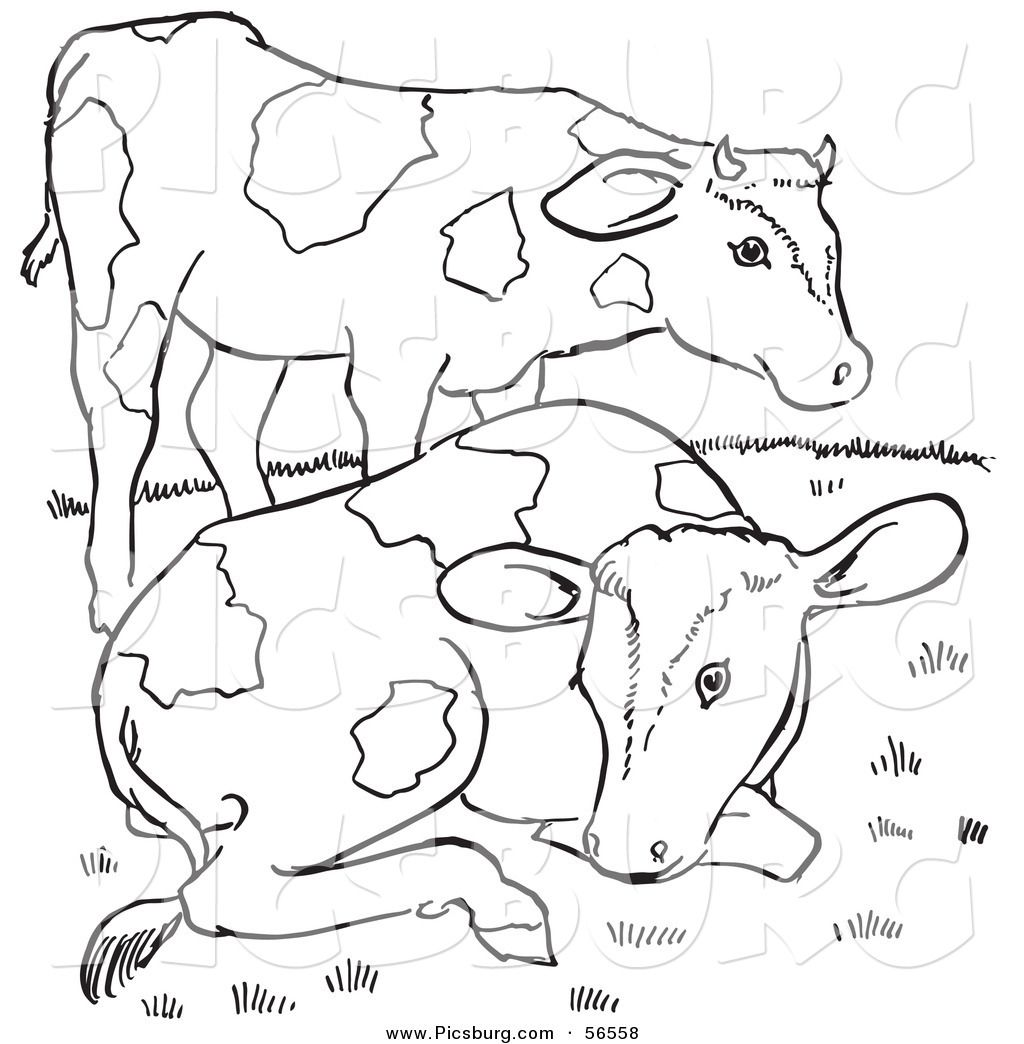 Clip Art Of Two Farm Cows On A Hill Black And White Line Art By Picsburg 56558 Cow Coloring Pages Black And White Lines Cow Colour