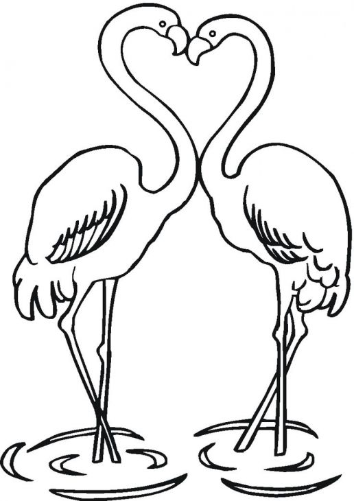 Two Flamingos in love coloring page to print for kids Animal