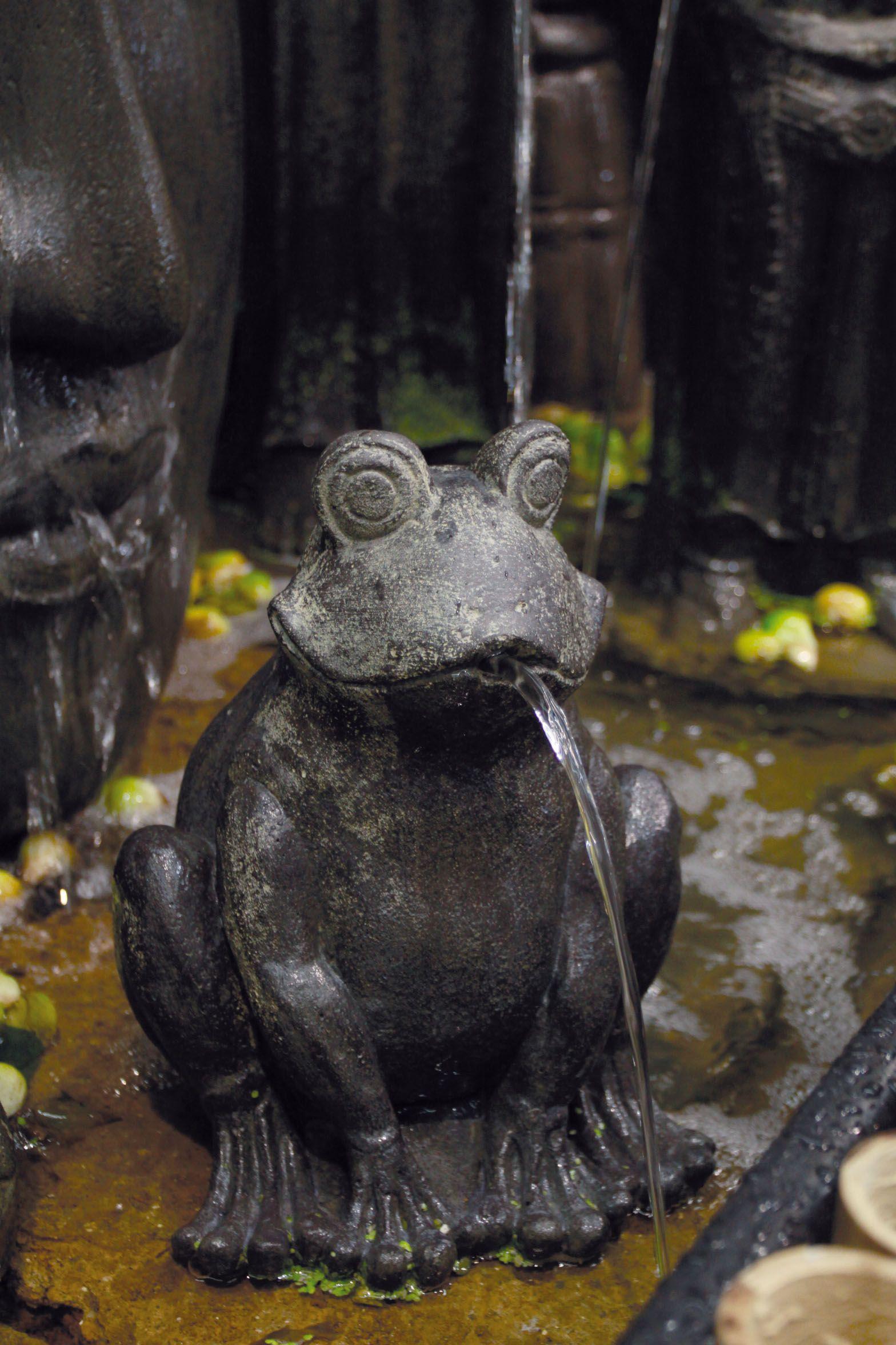 Wer spuckt denn da mit Wasser? Froschprinzen dürfen das. Das hat ...