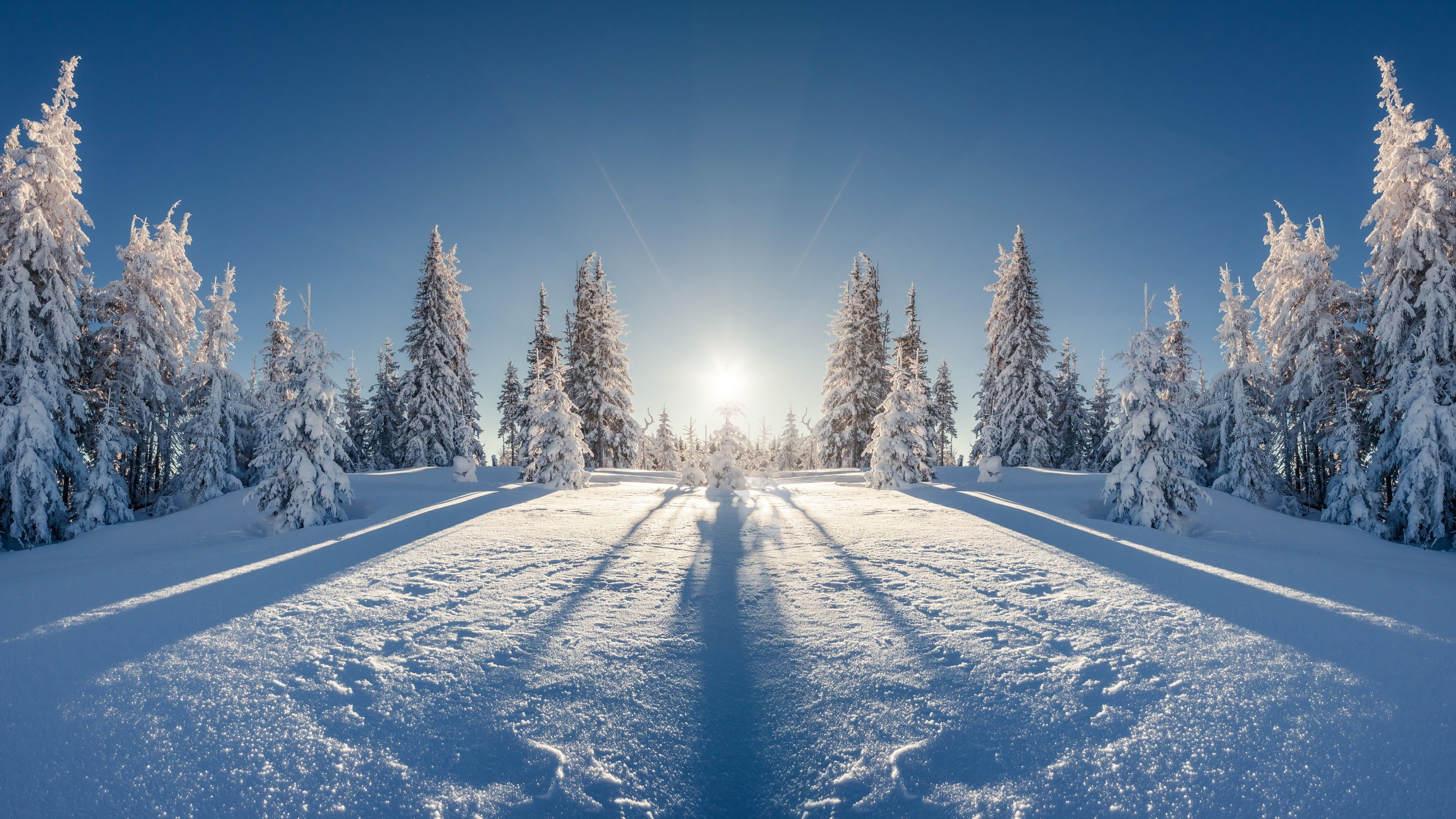 Winter 4k Nice Picture 4k Wallpaper Hdwallpaper Desktop In 2020 Winter Landscape Cool Pictures Landscape