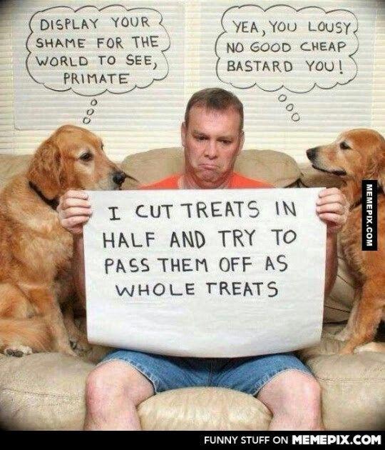 Human shame!!