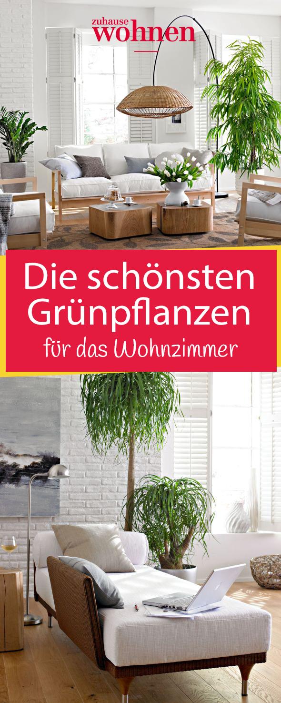 Grünpflanzen für jeden Wohnstil | Decor | Plants, House design und ...