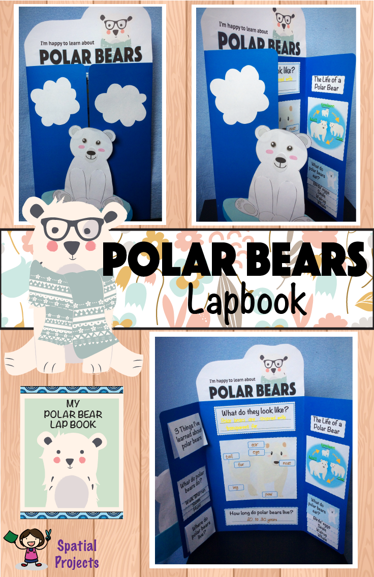 All About Polar Bears Nonfiction Unit Arctic Animals Activities Polar Bear Polar [ 1136 x 736 Pixel ]