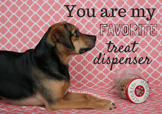 Printable Valentine S Day Cards For Dogs And Dog Lovers Printable Valentines Day Cards Printable Valentines Cards Valentines Day Dog