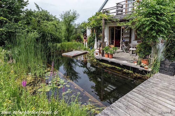 Bei So Einem Naturgarten Muss Man Nicht Mehr In Urlaub Fahren Entspannung Unmittelbar Vor Der Hausture Natural Swimming Ponds Swimming Pond Swimming Pool Pond